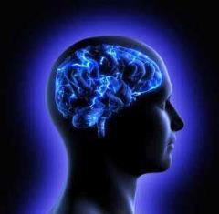 تقویت فوری حافظه در طب سنتی