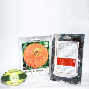 بذر گل آهار نارنجی