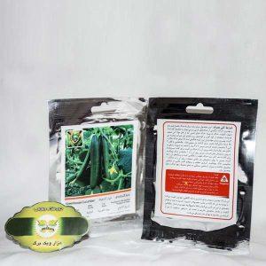 بذر خیار گلخانه ای