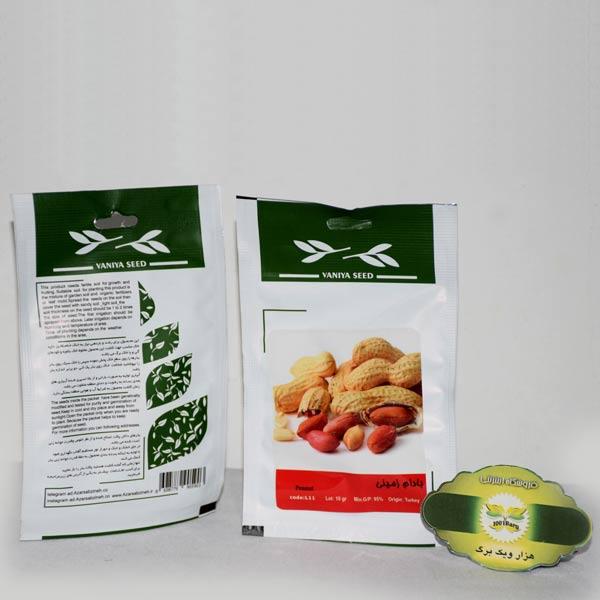 بذر بادام زمینی وانیا سید